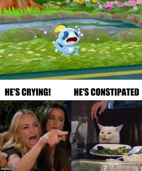 Which Is Which? | HE'S CRYING! HE'S CONSTIPATED | image tagged in memes,woman yelling at cat,pokemon | made w/ Imgflip meme maker