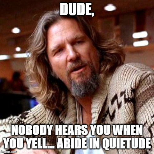 Confused Lebowski |  DUDE, NOBODY HEARS YOU WHEN YOU YELL... ABIDE IN QUIETUDE | image tagged in memes,confused lebowski | made w/ Imgflip meme maker