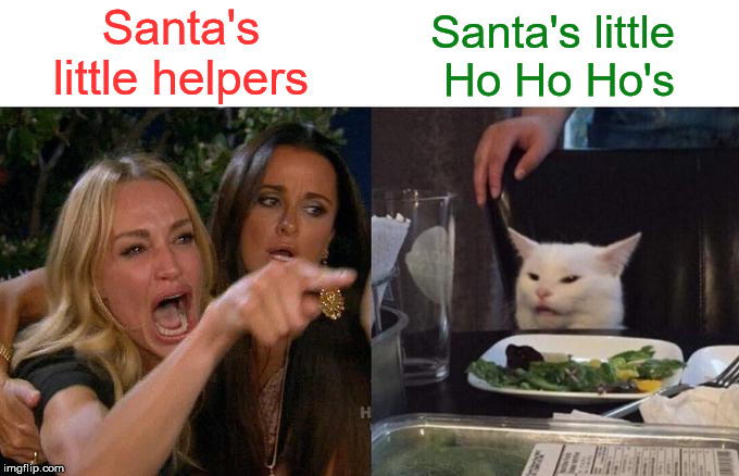 Woman Yelling At Cat | Santa's little helpers Santa's little  Ho Ho Ho's | image tagged in memes,woman yelling at cat,santa naughty list,ho ho ho,what if i told you,little | made w/ Imgflip meme maker