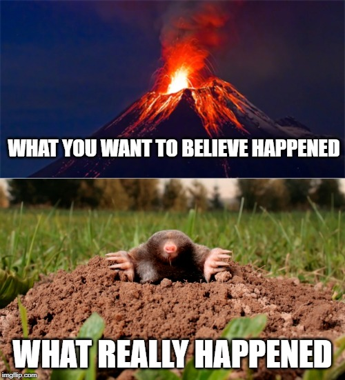 WHAT YOU WANT TO BELIEVE HAPPENED; WHAT REALLY HAPPENED | image tagged in volcano,mountains,mole | made w/ Imgflip meme maker