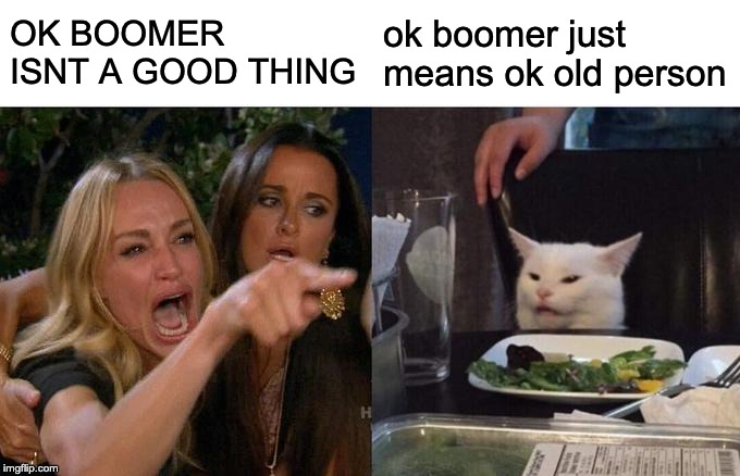 Woman Yelling At Cat Meme | OK BOOMER ISNT A GOOD THING ok boomer just means ok old person | image tagged in memes,woman yelling at cat | made w/ Imgflip meme maker