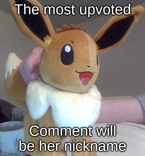 Choose wisely, as it cannot be changed later |  The most upvoted; Comment will be her nickname | image tagged in eevee,nickname,comment,upvotes | made w/ Imgflip meme maker