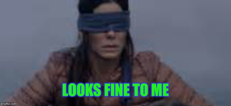 Bird Box | LOOKS FINE TO ME | image tagged in bird box | made w/ Imgflip meme maker