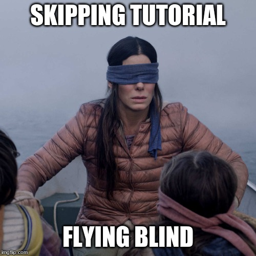 Bird Box |  SKIPPING TUTORIAL; FLYING BLIND | image tagged in memes,bird box | made w/ Imgflip meme maker