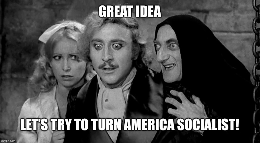 GREAT IDEA LET'S TRY TO TURN AMERICA SOCIALIST! | made w/ Imgflip meme maker
