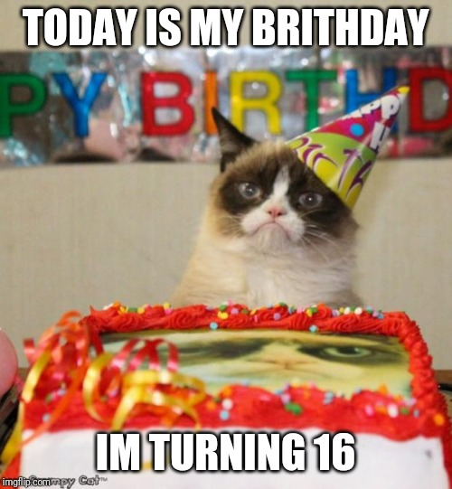 Grumpy Cat Birthday | TODAY IS MY BRITHDAY I'M TURNING 16 | image tagged in memes,grumpy cat birthday,grumpy cat | made w/ Imgflip meme maker
