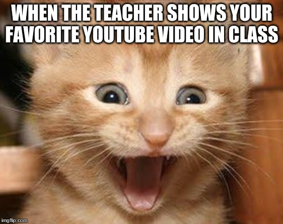 Excited Cat |  WHEN THE TEACHER SHOWS YOUR FAVORITE YOUTUBE VIDEO IN CLASS | image tagged in memes,excited cat | made w/ Imgflip meme maker