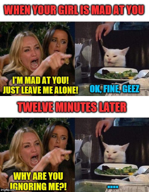 This is exactly like me, I'll admit it :) |  WHEN YOUR GIRL IS MAD AT YOU; I'M MAD AT YOU! JUST LEAVE ME ALONE! OK, FINE, GEEZ; TWELVE MINUTES LATER; WHY ARE YOU IGNORING ME?! .... | image tagged in memes,woman yelling at cat,men and women,relationships | made w/ Imgflip meme maker