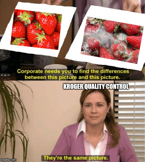 Office comparison meme |  KROGER QUALITY CONTROL | image tagged in office same picture,job,fruits,memes,grocery store | made w/ Imgflip meme maker