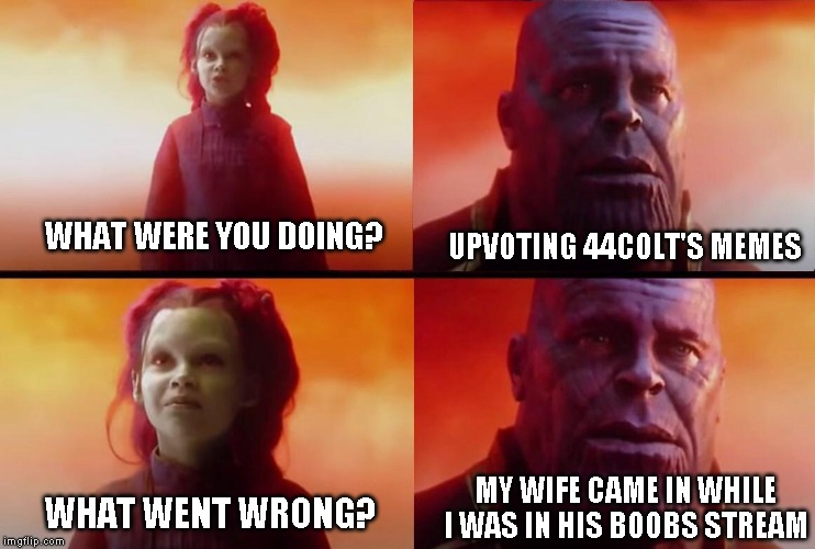 The race to one million claims it's first victim | WHAT WERE YOU DOING? WHAT WENT WRONG? UPVOTING 44COLT'S MEMES MY WIFE CAME IN WHILE I WAS IN HIS BOOBS STREAM | image tagged in what did it cost,you try explaining it to her | made w/ Imgflip meme maker