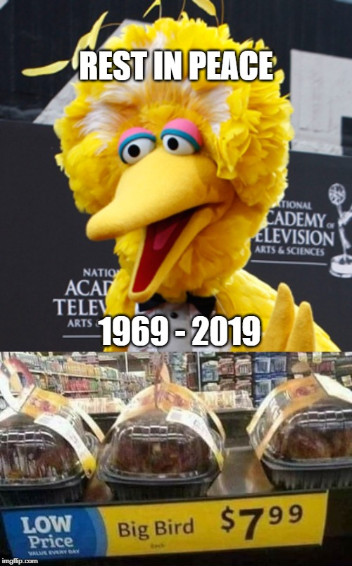 REST IN PEACE; 1969 - 2019 | image tagged in memes,big bird | made w/ Imgflip meme maker