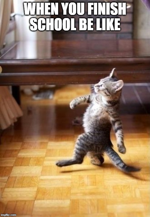Cool Cat Stroll |  WHEN YOU FINISH SCHOOL BE LIKE | image tagged in memes,cool cat stroll | made w/ Imgflip meme maker