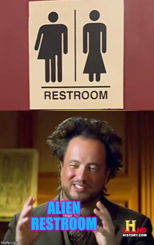 Alien in restroom | ALIEN RESTROOM | image tagged in memes,ancient aliens,funny,restroom,signs,wrong | made w/ Imgflip meme maker