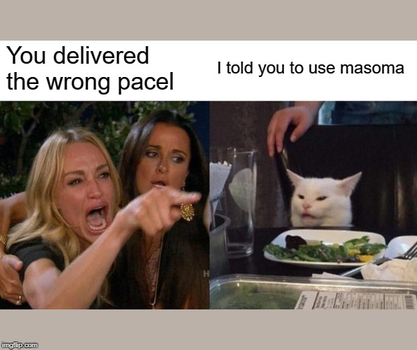 Woman Yelling At Cat Meme | You delivered the wrong pacel I told you to use masoma | image tagged in memes,woman yelling at cat | made w/ Imgflip meme maker