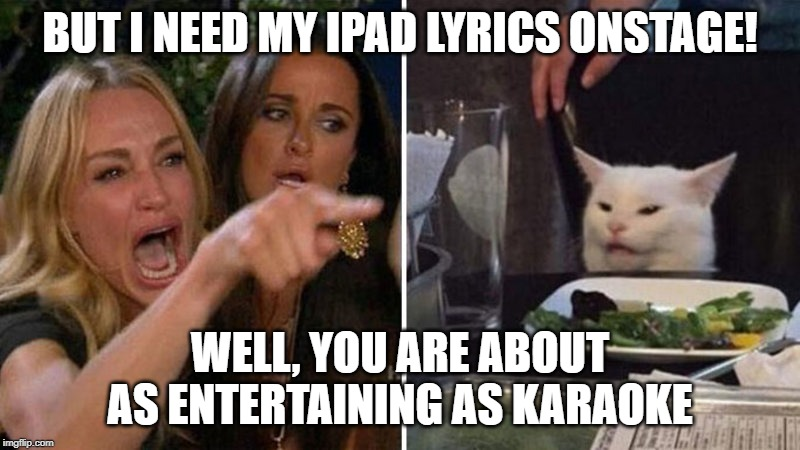 Woman yelling at white cat |  BUT I NEED MY IPAD LYRICS ONSTAGE! WELL, YOU ARE ABOUT AS ENTERTAINING AS KARAOKE | image tagged in woman yelling at white cat | made w/ Imgflip meme maker