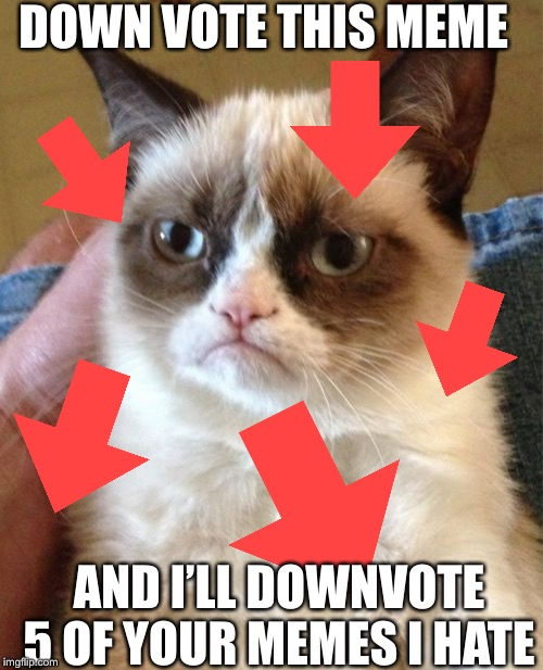 If you want my downvoted your gonna have to tell me in the comments. Have a bad day people. | DOWN VOTE THIS MEME AND I'LL DOWNVOTE 5 OF YOUR MEMES I HATE | image tagged in memes,grumpy cat | made w/ Imgflip meme maker