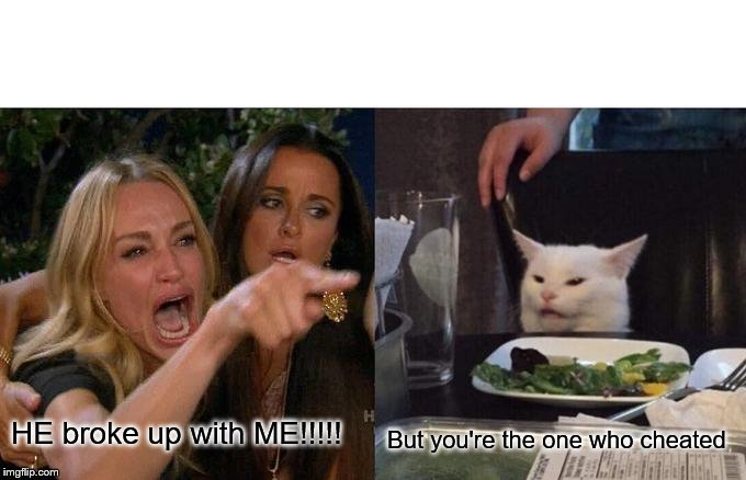 Woman Yelling At Cat | HE broke up with ME!!!!! But you're the one who cheated | image tagged in memes,woman yelling at cat,cheating,cheaters,liars | made w/ Imgflip meme maker