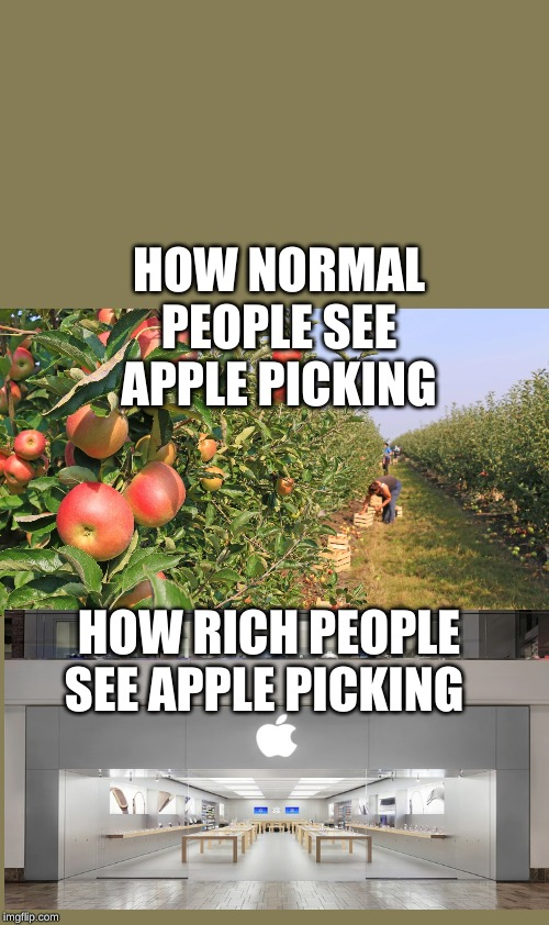 lol | HOW NORMAL PEOPLE SEE APPLE PICKING HOW RICH PEOPLE SEE APPLE PICKING | image tagged in memes | made w/ Imgflip meme maker