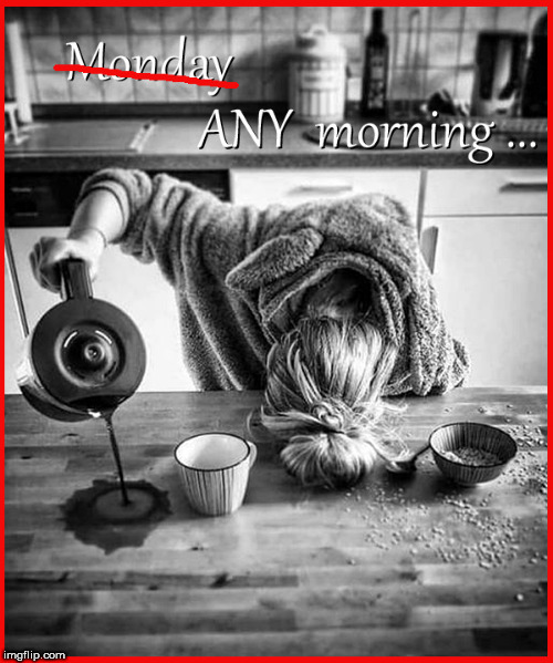 Monday...ANY Morning | image tagged in monday mornings,i hate mondays,lol so funny,funny memes,so true memes,coffee addict | made w/ Imgflip meme maker