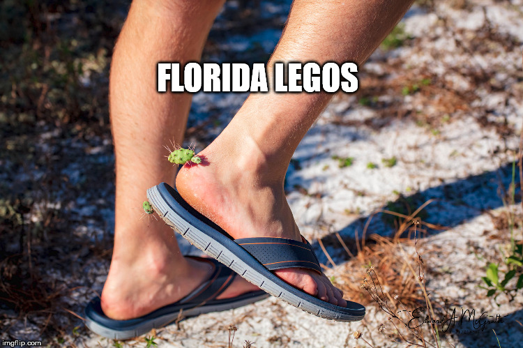 Yep #Florida |  FLORIDA LEGOS | image tagged in meanwhile in florida,florida,florida man | made w/ Imgflip meme maker
