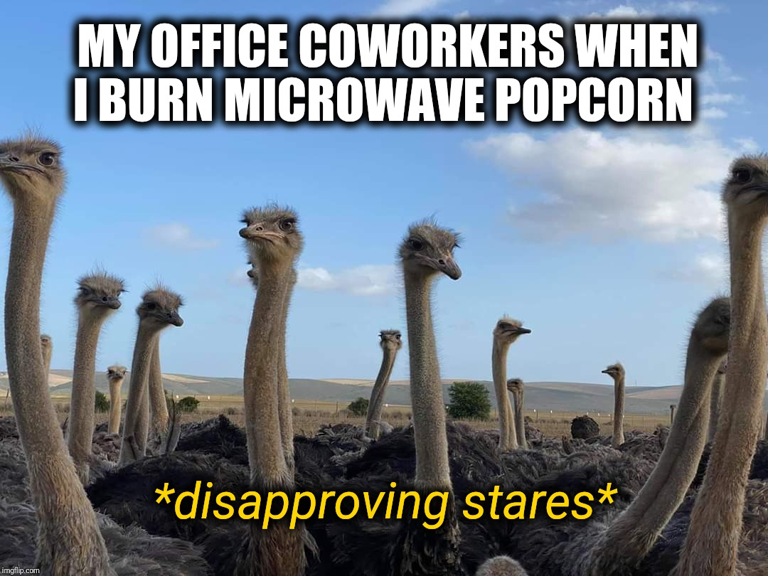 Smells like burning hair and tires |  MY OFFICE COWORKERS WHEN I BURN MICROWAVE POPCORN; *disapproving stares* | image tagged in disapproving stares,microwave,popcorn,office,memes,funny memes | made w/ Imgflip meme maker