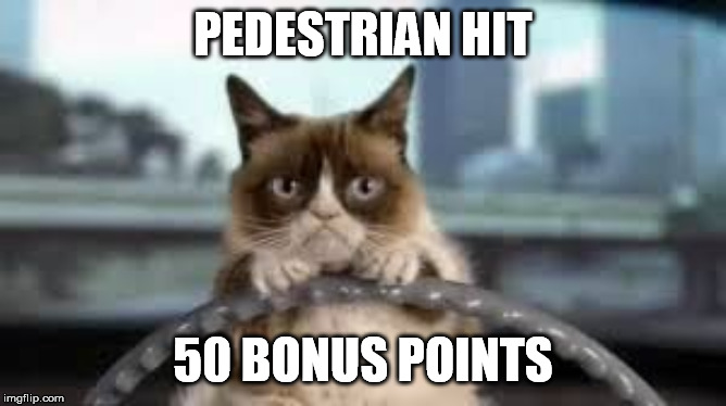 grumpy cat driving | PEDESTRIAN HIT 50 BONUS POINTS | image tagged in grumpy cat driving | made w/ Imgflip meme maker