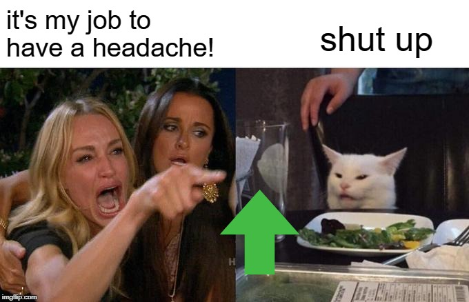 Woman Yelling At Cat Meme | it's my job to have a headache! shut up | image tagged in memes,woman yelling at cat | made w/ Imgflip meme maker