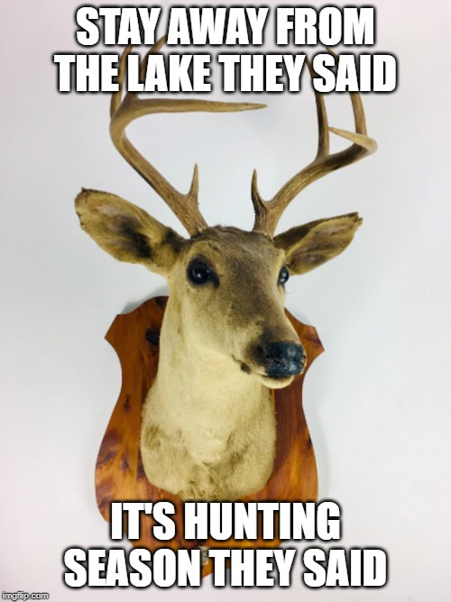 hunting season | STAY AWAY FROM THE LAKE THEY SAID IT'S HUNTING SEASON THEY SAID | image tagged in animals | made w/ Imgflip meme maker