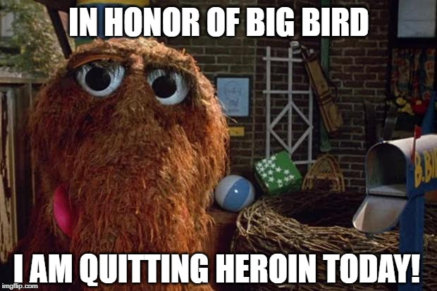 Mr Snuffleupagus Looking for Big Bird | IN HONOR OF BIG BIRD I AM QUITTING HEROIN TODAY! | image tagged in mr snuffleupagus looking for big bird | made w/ Imgflip meme maker