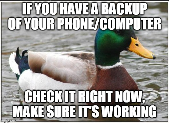 Actual Advice Mallard | IF YOU HAVE A BACKUP OF YOUR PHONE/COMPUTER CHECK IT RIGHT NOW, MAKE SURE IT'S WORKING | image tagged in memes,actual advice mallard,AdviceAnimals | made w/ Imgflip meme maker
