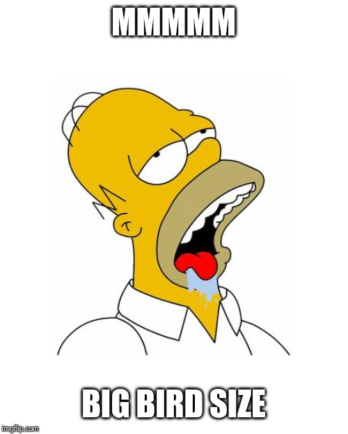 Homer Simpson Drooling | MMMMM BIG BIRD SIZE | image tagged in homer simpson drooling | made w/ Imgflip meme maker
