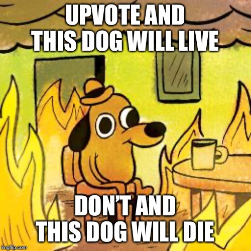 Dog in burning house | UPVOTE AND THIS DOG WILL LIVE DON'T AND THIS DOG WILL DIE | image tagged in dog in burning house | made w/ Imgflip meme maker