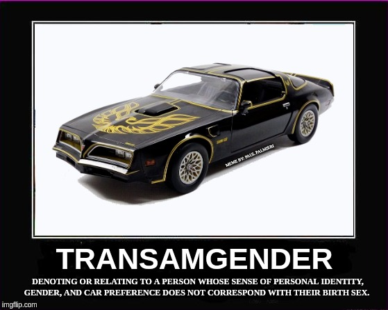 Transamgender: I feel like a muscle car. | MEME BY: PAUL PALMIERI | image tagged in trans am,transgender,stranger things,funny memes,muscle car,tired of hearing about transgenders | made w/ Imgflip meme maker