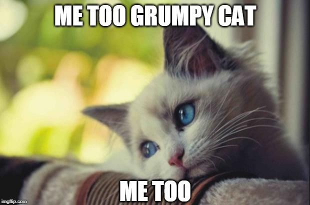 Sad cat | ME TOO GRUMPY CAT ME TOO | image tagged in sad cat | made w/ Imgflip meme maker