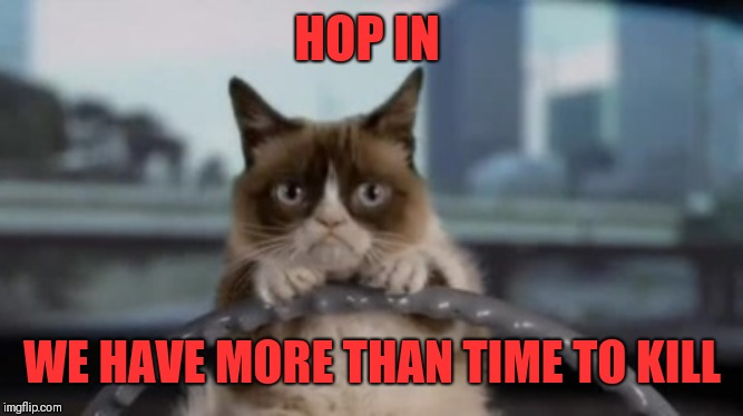 Grumpy cat driving | HOP IN WE HAVE MORE THAN TIME TO KILL | image tagged in grumpy cat driving | made w/ Imgflip meme maker
