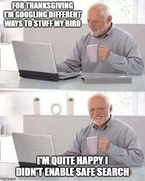 I'd pay money to see his computer screen | FOR THANKSGIVING I'M GOOGLING DIFFERENT WAYS TO STUFF MY BIRD I'M QUITE HAPPY I DIDN'T ENABLE SAFE SEARCH | image tagged in memes,hide the pain harold,thanksgiving,turkey,stuffing | made w/ Imgflip meme maker