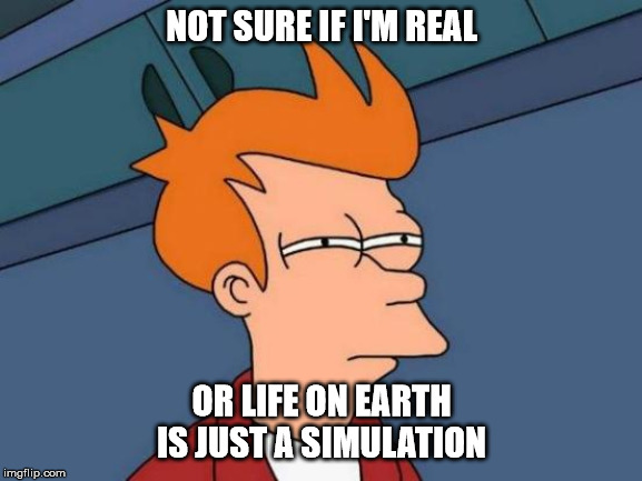 Futurama Fry | NOT SURE IF I'M REAL OR LIFE ON EARTH IS JUST A SIMULATION | image tagged in memes,futurama fry | made w/ Imgflip meme maker
