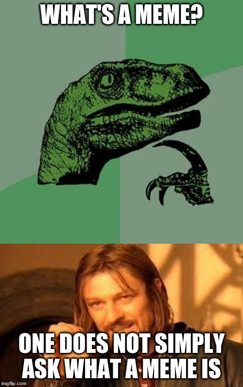 Bruh |  WHAT'S A MEME? ONE DOES NOT SIMPLY ASK WHAT A MEME IS | image tagged in memes,philosoraptor | made w/ Imgflip meme maker