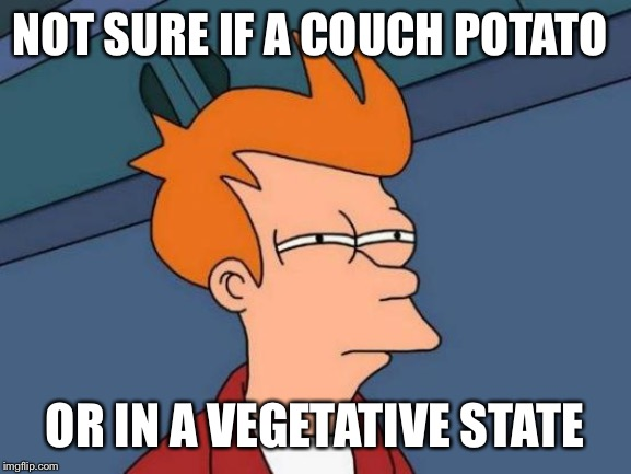 Futurama Fry Meme | NOT SURE IF A COUCH POTATO OR IN A VEGETATIVE STATE | image tagged in memes,futurama fry | made w/ Imgflip meme maker