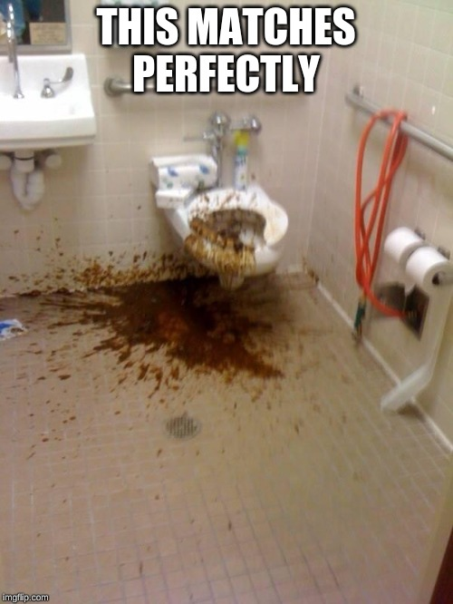 Girls poop too | THIS MATCHES PERFECTLY | image tagged in girls poop too | made w/ Imgflip meme maker
