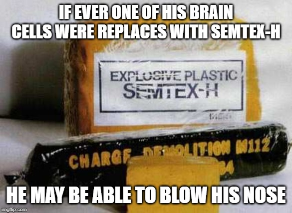 Classic Insults | IF EVER ONE OF HIS BRAIN CELLS WERE REPLACES WITH SEMTEX-H HE MAY BE ABLE TO BLOW HIS NOSE | image tagged in semtex,plastic explosives,brain cells | made w/ Imgflip meme maker