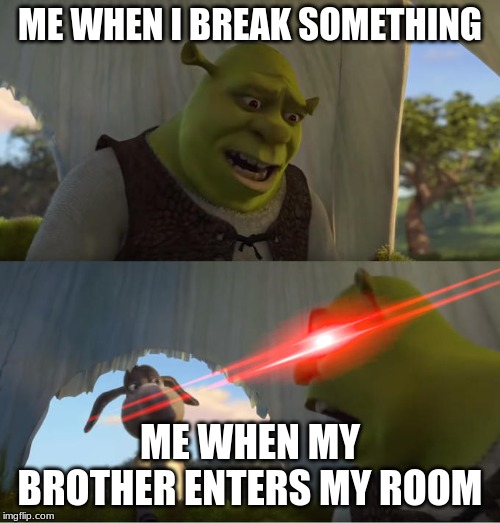 Shrek For Five Minutes | ME WHEN I BREAK SOMETHING ME WHEN MY BROTHER ENTERS MY ROOM | image tagged in shrek for five minutes | made w/ Imgflip meme maker