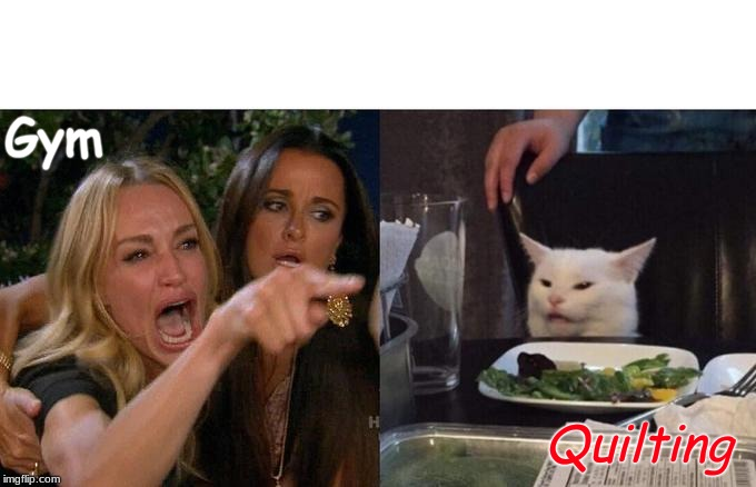 Woman Yelling At Cat Meme | Gym Quilting | image tagged in memes,woman yelling at cat | made w/ Imgflip meme maker