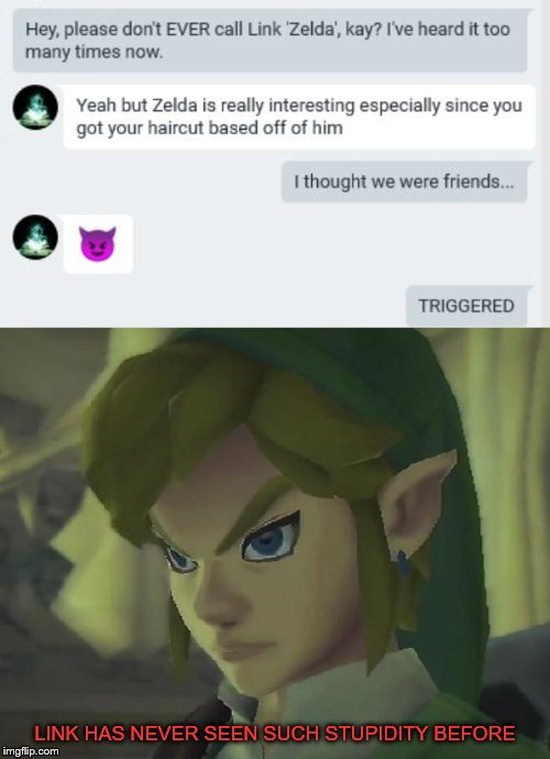 Friends these days... |  LINK HAS NEVER SEEN SUCH STUPIDITY BEFORE | image tagged in angry link | made w/ Imgflip meme maker