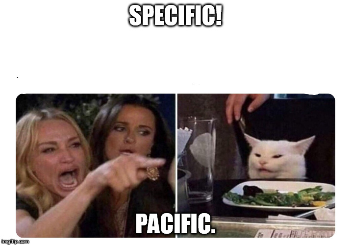 Housewives cat | SPECIFIC! PACIFIC. | image tagged in housewives cat | made w/ Imgflip meme maker