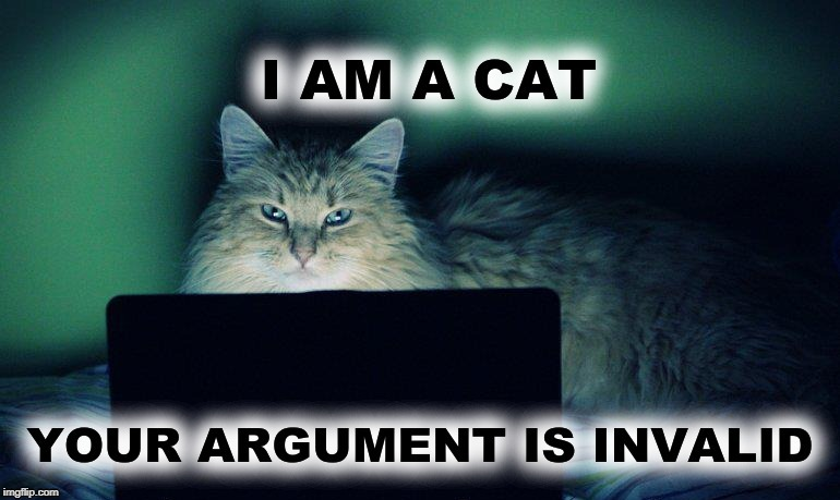 image tagged in your argument is invalid,cat,meanwhile on imgflip,imgflip trolls | made w/ Imgflip meme maker