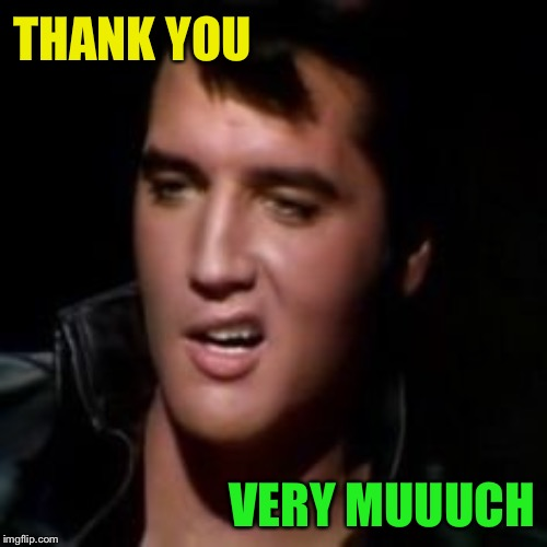 Elvis, thank you | THANK YOU VERY MUUUCH | image tagged in elvis thank you | made w/ Imgflip meme maker
