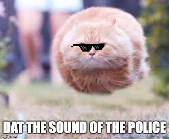 GET OVER HERE | DAT THE SOUND OF THE POLICE | image tagged in get over here | made w/ Imgflip meme maker