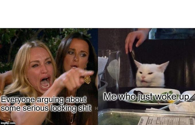 Woman Yelling At Cat Meme | Everyone arguing about some serious looking shit Me who just woke up | image tagged in memes,woman yelling at cat | made w/ Imgflip meme maker