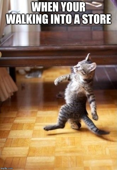 Cool Cat Stroll |  WHEN YOUR WALKING INTO A STORE | image tagged in memes,cool cat stroll | made w/ Imgflip meme maker